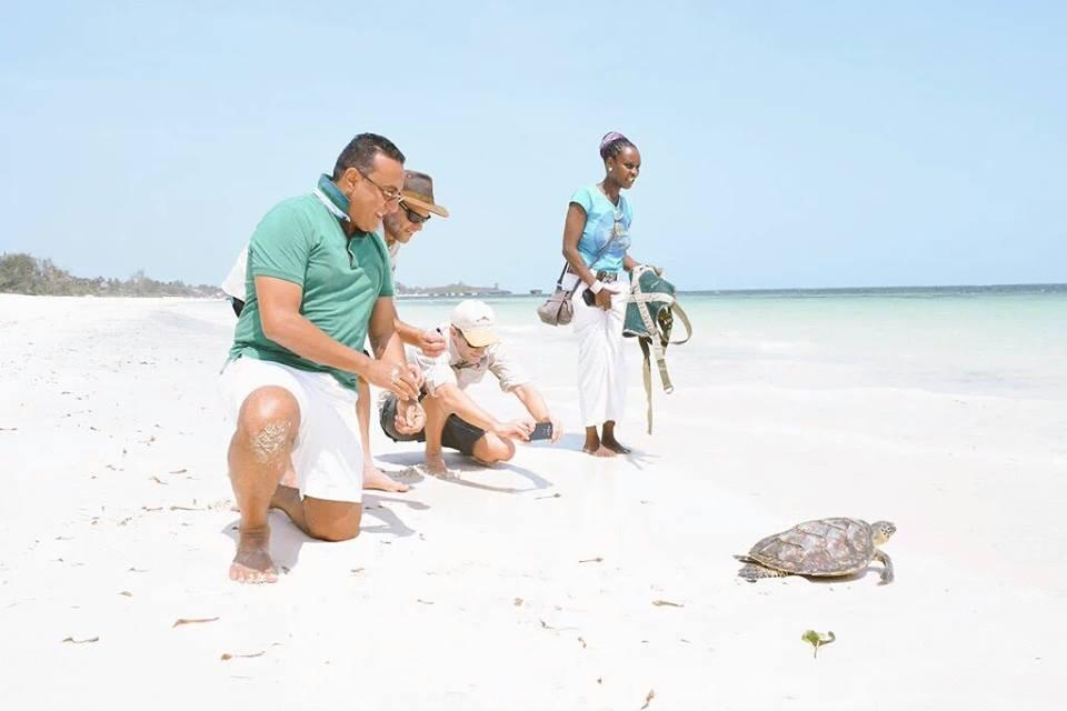 CS Balala releases an endangered sea turtle. Photo: Mohammed Hersi