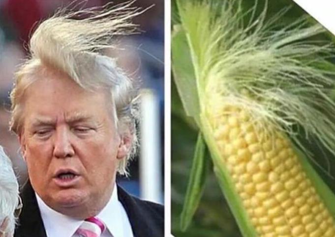 Trump calls Kenyans thieves, foolish liars with cheap minds...