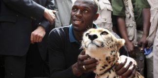 Usain Bolt Adopts A Cheetah From Kenya
