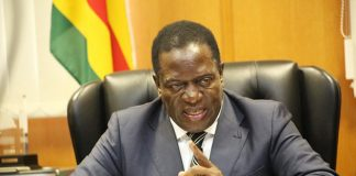 Emmerson Mnangagwa ngwena Interim President Zimbabwe