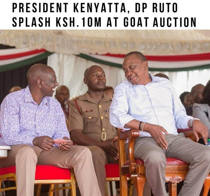 President Uhuru Kenyatta and his Deputy Dr. William Ruto splash Ksh.10 million during the Kimalel goat auction Kajiado
